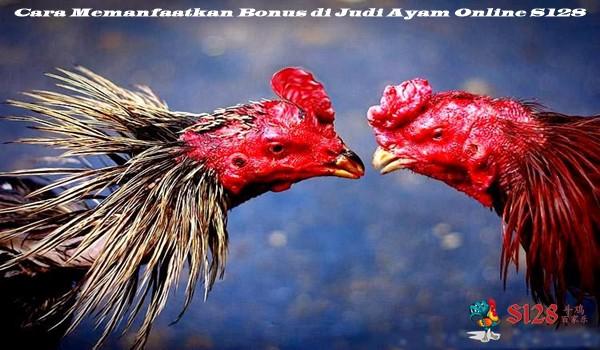 Cara Memanfaatkan Bonus di Judi Ayam Online S128